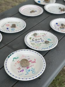 positive plates